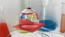 10 activités scientifiques à faire avec les enfants