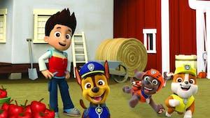 Les meilleures séries pour enfants