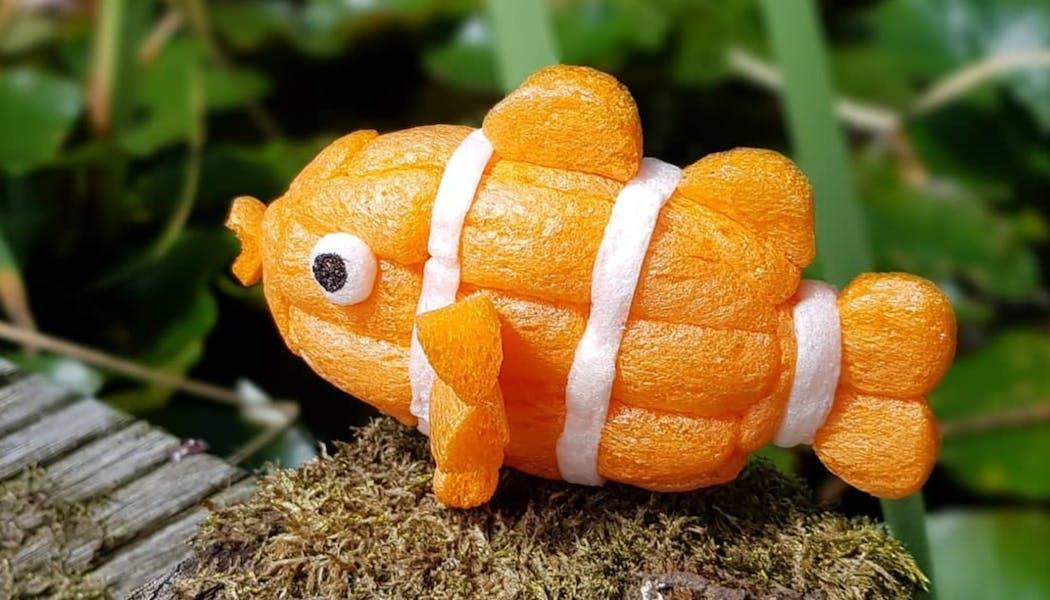 un poisson clown Nemo