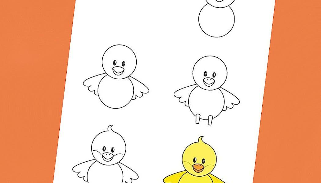 fiche pour apprendre à dessiner un poussin