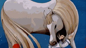27 histoires de chevaux