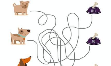 A chaque chien, sa gamelle !