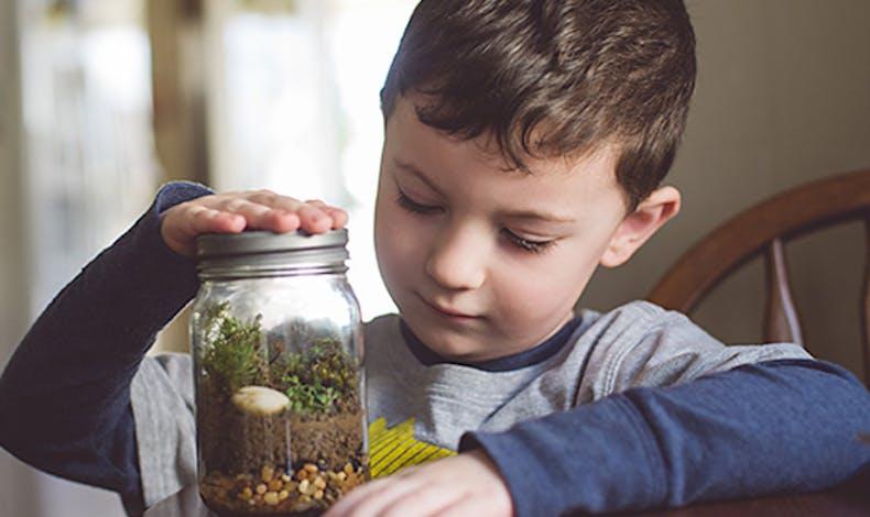 Bricoler un herbarium dans un bocal