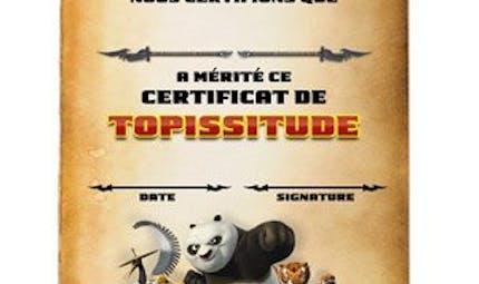 Certificat de Topissitude : Kung-Fu Panda
