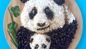 Cette artiste réalise d'incroyables animaux dans l'assiette !