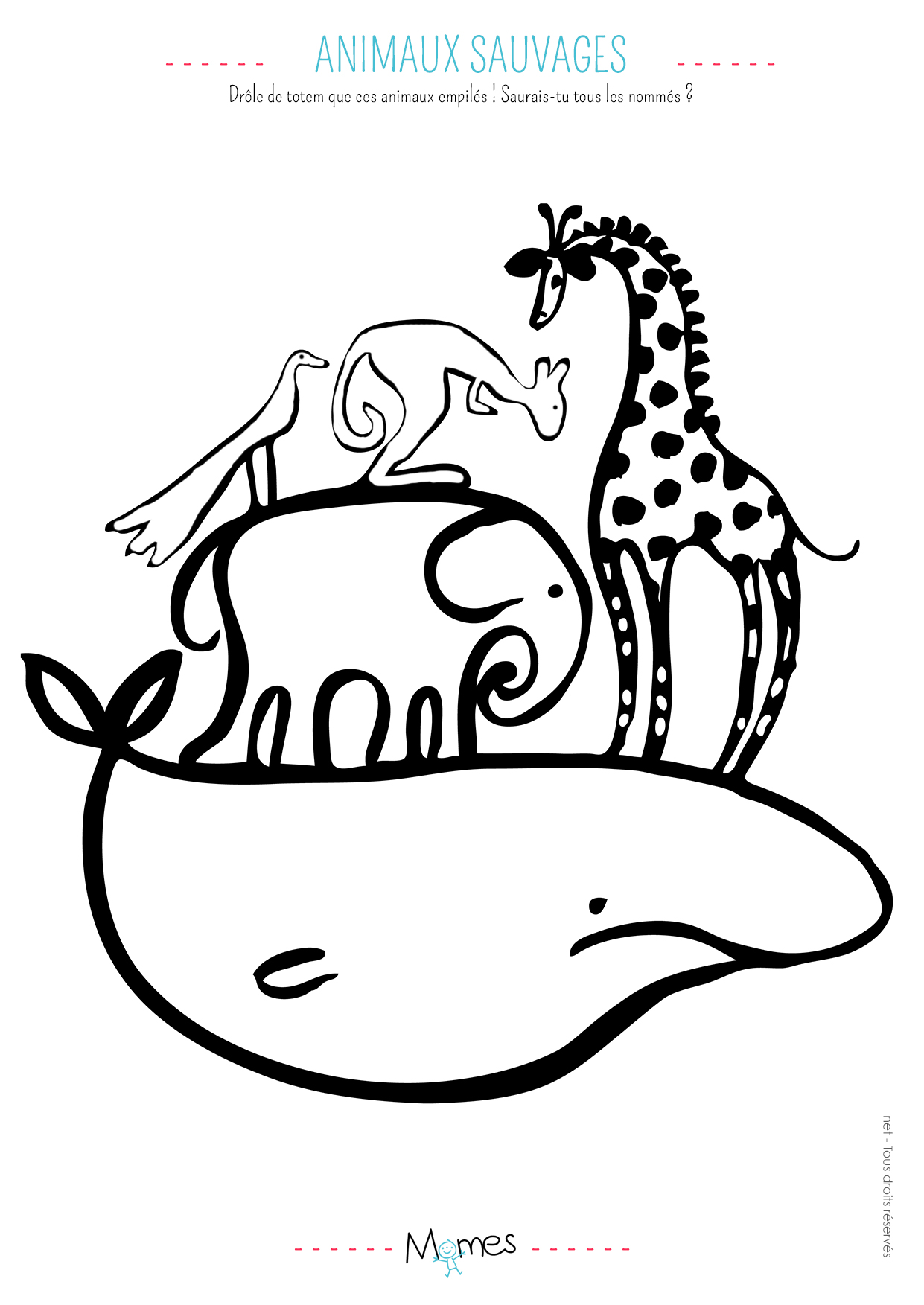 Coloriage Animaux Sauvage Momes Net