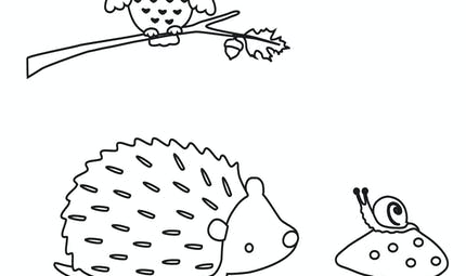 coloriage automne : le hibou, le hérisson et l'escargot