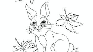 Coloriage Automne : le petit lapin