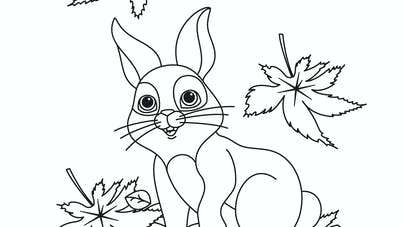 coloriage automne lapin feuille
