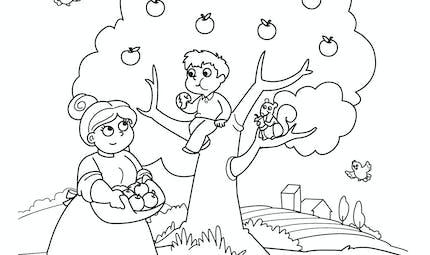 Coloriage automne : le pommier