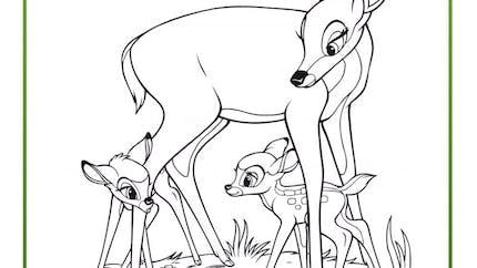 Coloriage Bambi 12