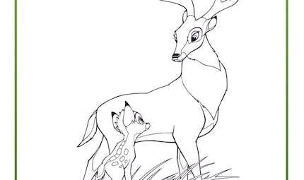 Coloriage Bambi 6