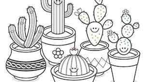 Coloriage de la famille Cactus