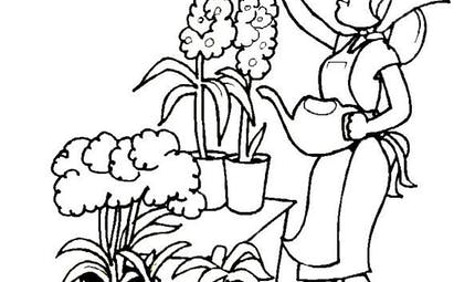 Coloriage la fleuriste