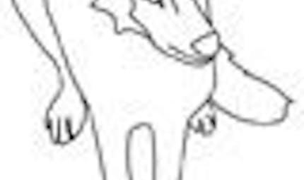 Coloriage les loups (4)