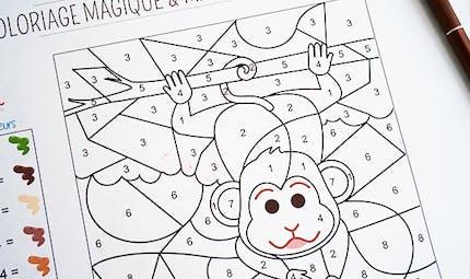 Coloriage magique et mathématique : le singe