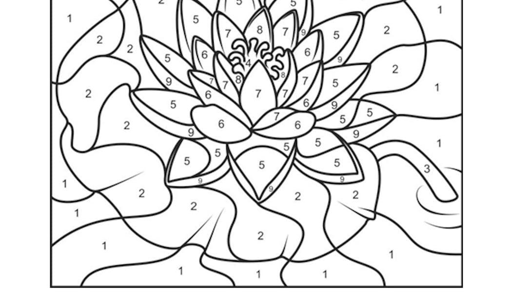 Coloriages Fleur Momes Net