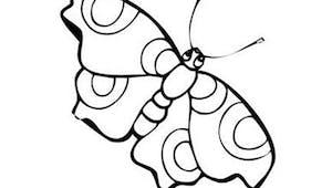 Coloriage petit papillon