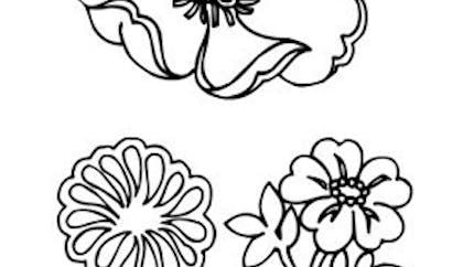 Coloriages les fleurs