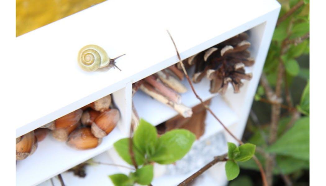 Construiser un hôtel à insectes