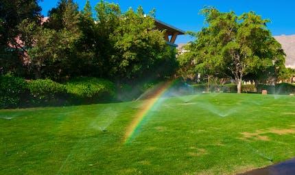 Créer un arc-en-ciel dans le jardin