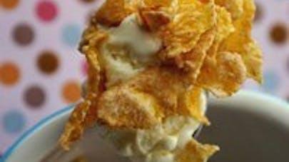 Crème glacée aux céréales