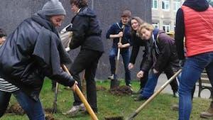 """Dans ce collège, les élèves ne vont plus en """"colle"""" mais en corvée de jardinage !"""