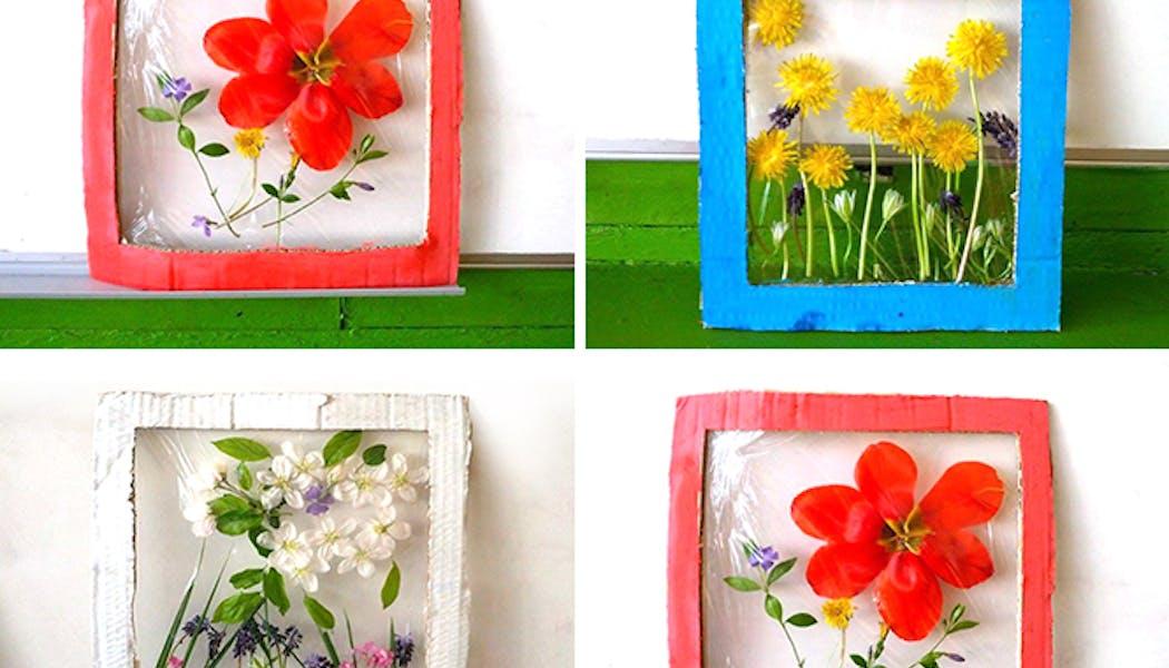 Des cadres de fleurs séchés