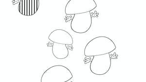 Des champignons à pois et à rayures - exercice