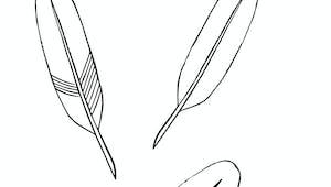 Des plumes - exercice de tracé à imprimer