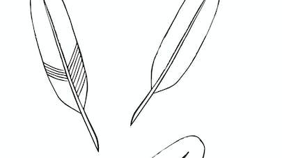 plumes à dessiner maternelle