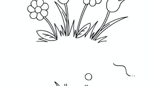 Dessiner les fleurs