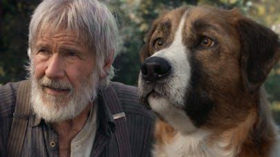 l'appel de la forêt film harrison ford omar sy       adaptation roman jack london bande annonce