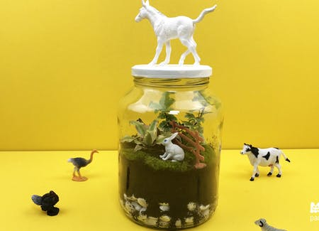 DIY Terrarium mini-jardin