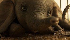 Dumbo : Disney dévoile une nouvelle et émouvante bande annonce
