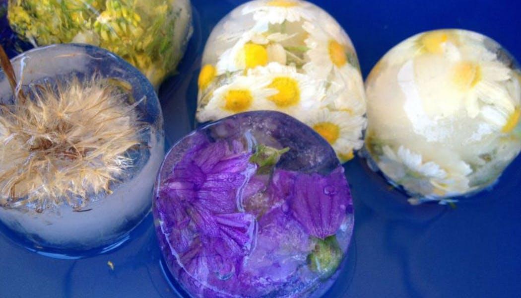 Emprisonner des fleurs dans la glace