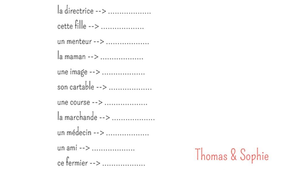 Exercice de grammaire : noms féminins et masculins (2)