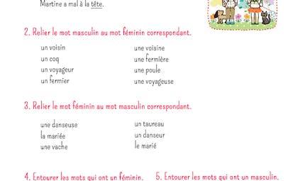 Exercice de grammaire : noms féminins et masculins
