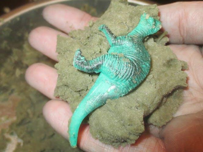 Fabriquer des fossiles de dinosaures