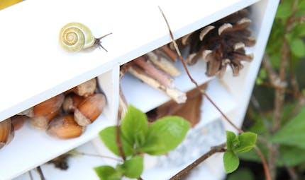 Fabriquer un hôtel à insectes