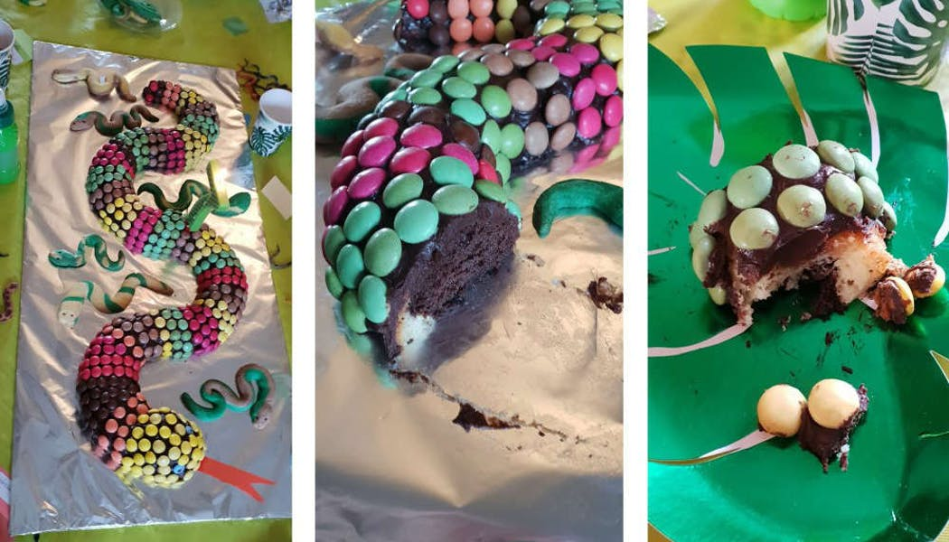 Gâteau « Serpent »
