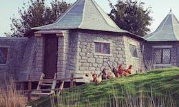 Harry Potter : Dormir dans la cabane de Hagrid, c'est possible !