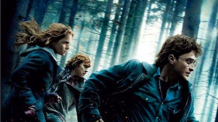 Harry Potter et les reliques de la mort- Partie 1