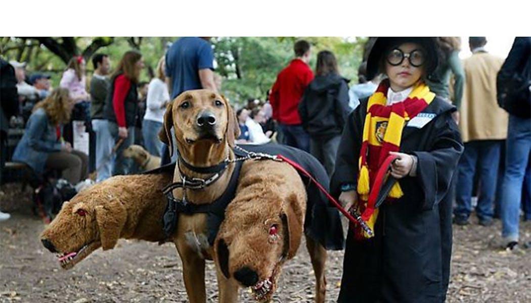 Harry Potter et Touffu déguisements enfants         halloween