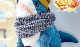 Ils sont tous fous de la peluche requin bleu d'Ikea !