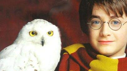 Je découvre : Harry Potter