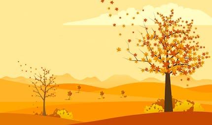 Je découvre l'automne
