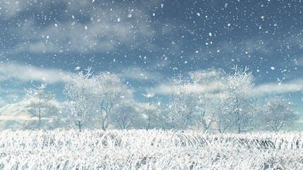 Je découvre la neige