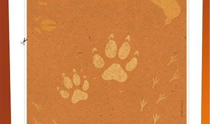 Jeu Le Roi Lion: Les maracas de Simba (2/2)