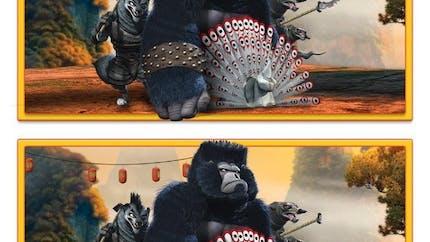 Kung-Fu Panda : jeu des différences 2